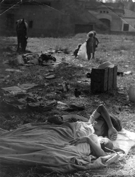 Somorrostro. Barcelona, <em> ca. </em> 1950