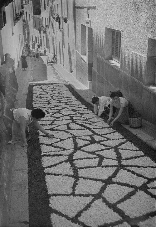 Elaboració de catifes de flors amb motiu del Corpus. Sitges. Barcelona, 1955