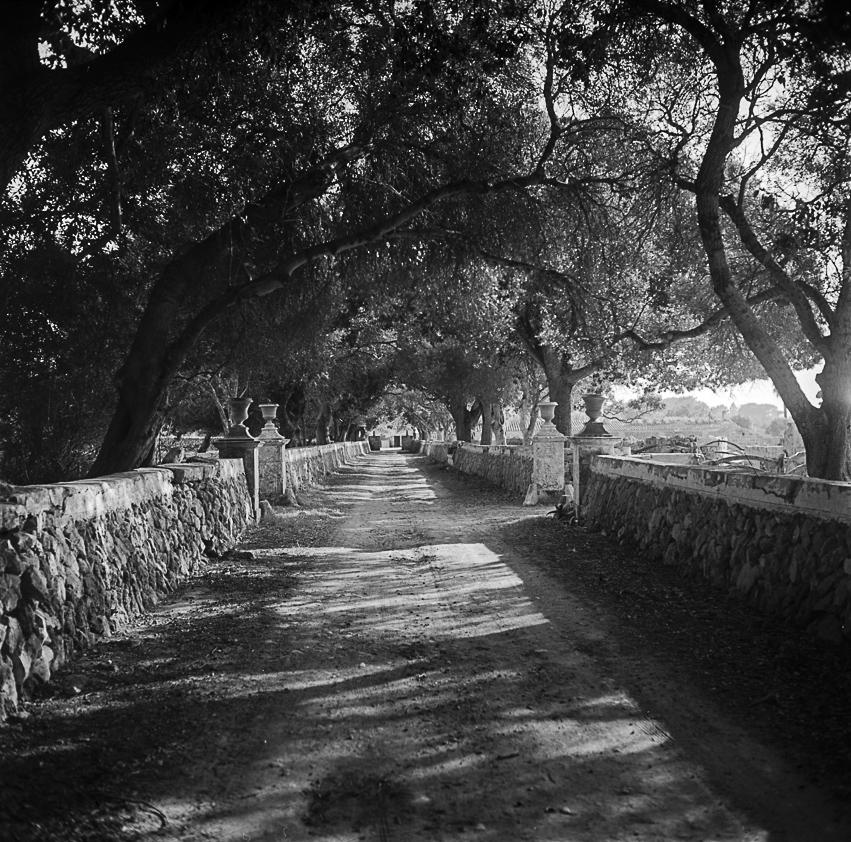 Son Saura. Menorca, ca. 1960