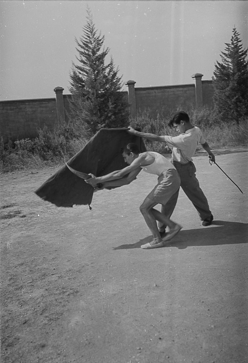 Escola taurina de Barcelona. Barcelona, ca. 1960